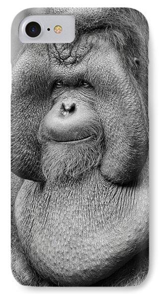 Bornean Orangutan IIi IPhone Case by Lourry Legarde