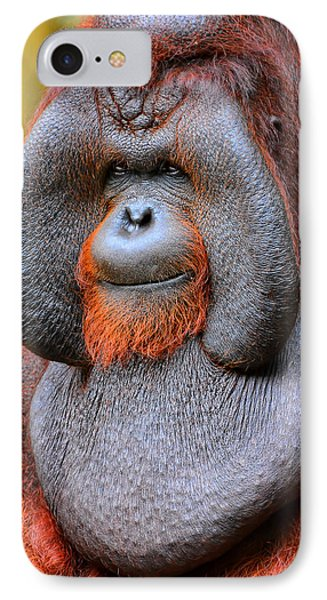 Bornean Orangutan Iv IPhone Case by Lourry Legarde
