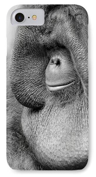 Bornean Orangutan V IPhone Case by Lourry Legarde