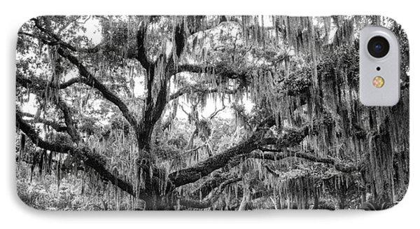 Bosque Bello Oak Phone Case by Dawna  Moore Photography