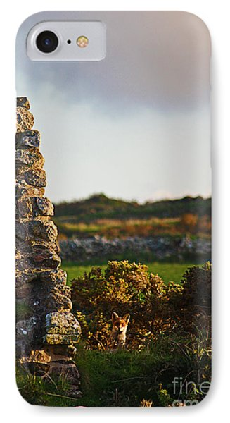 Botallack Fox At Sunset Phone Case by Terri Waters