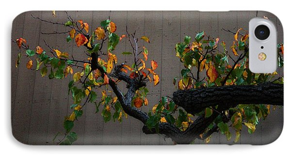 Bouquet From Autumn Leaves.three. Phone Case by Viktor Savchenko