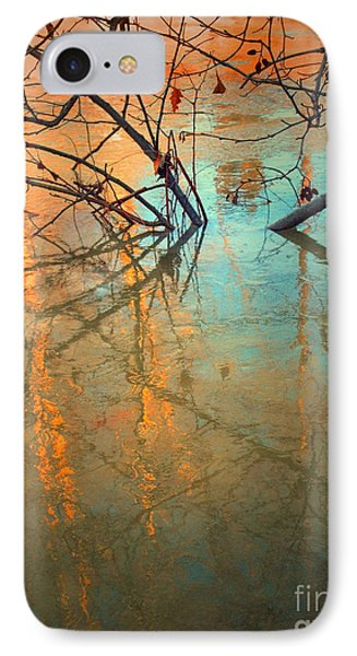 Branches And Ice Phone Case by Tara Turner