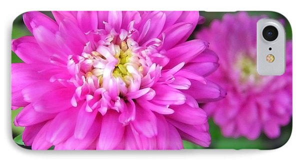 Bright Pink Zinnia Flowers Phone Case by Christina Rollo