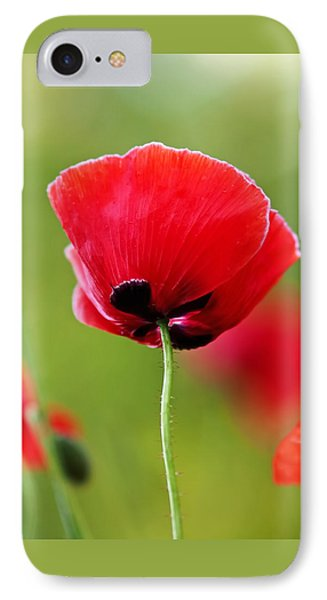 Brilliant Red Poppy Flower IPhone Case by Rona Black