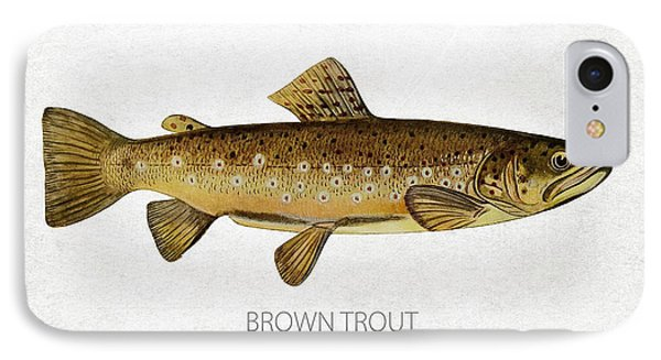 Brown Trout IPhone Case by Aged Pixel