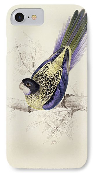 Browns Parakeet IPhone Case by Edward Lear