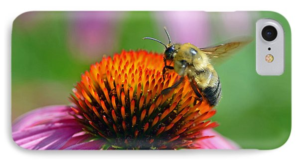 IPhone Case featuring the photograph Bumblebee On A Coneflower by Rodney Campbell