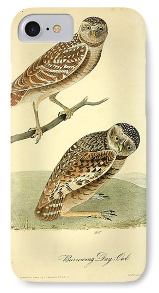 Burrowing Day Owl IPhone Case by Philip Ralley