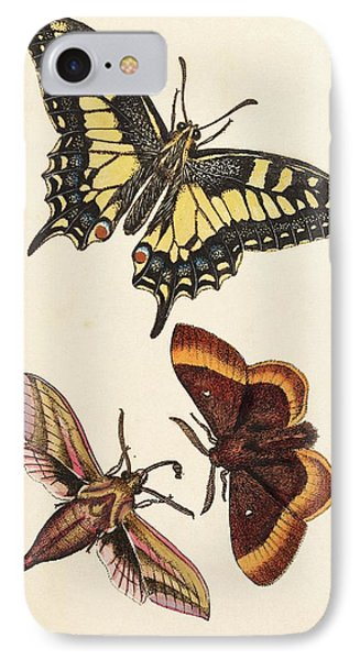 Butterflies IPhone Case by King's College London