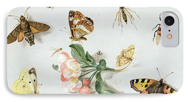 Butterflies Moths And Other Insects With A Sprig Of Apple Blossom IPhone Case by Jan Van Kessel
