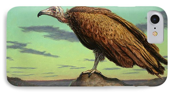 Buzzard Rock IPhone Case by James W Johnson