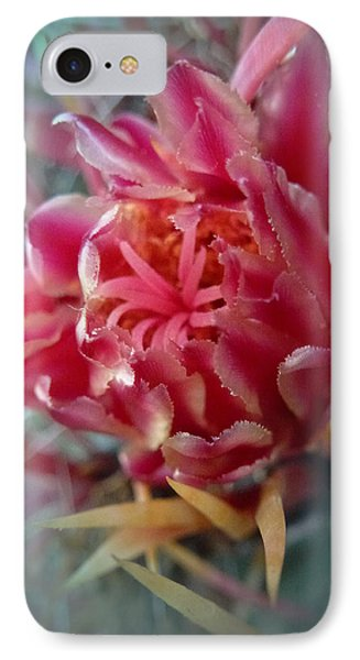 Cactus Blossom 6 Phone Case by Xueling Zou