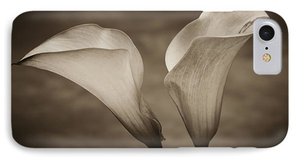 Calla Lilies In Sepia IPhone Case by Sebastian Musial
