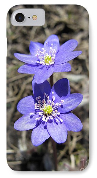 Calling Spring. Two Violets Phone Case by Ausra Huntington nee Paulauskaite