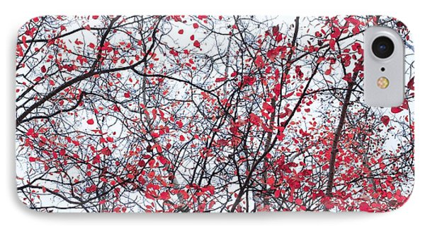 Canopy Trees Phone Case by Priska Wettstein