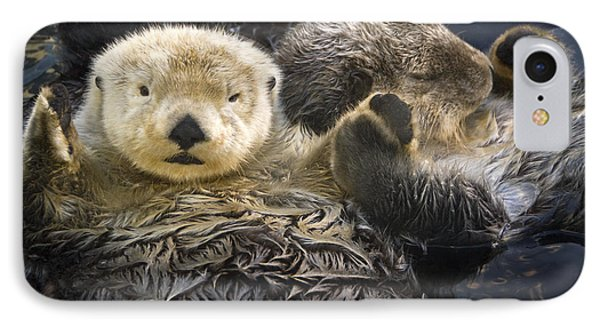 Captive Two Sea Otters Holding Paws At IPhone Case by Tom Soucek