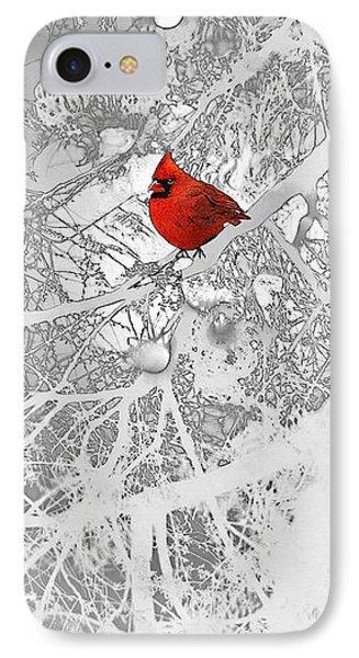 Cardinal In Winter IPhone Case by Ellen Henneke