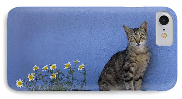 Cat And Flowers In Greece IPhone Case by Jean-Louis Klein and Marie-Luce Hubert