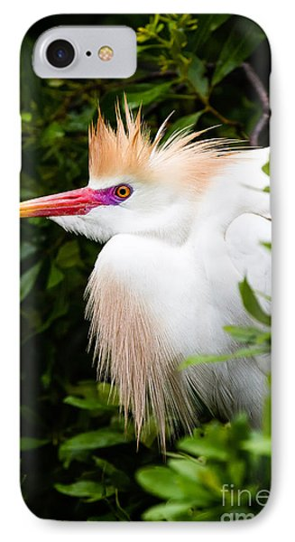 Cattle Egret Phone Case by Dawna  Moore Photography