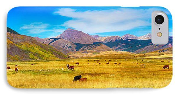 Cattle Grazing Autumn Panorama Phone Case by James BO  Insogna