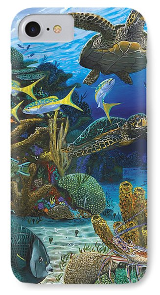 Cayman Turtles Re0010 IPhone Case by Carey Chen