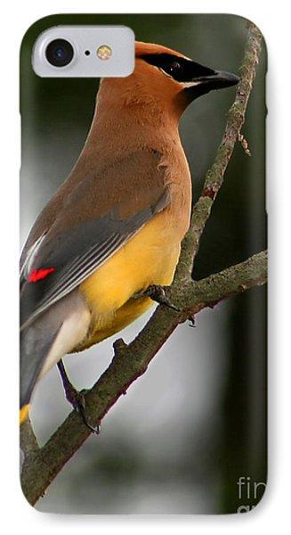 Cedar Wax Wing II IPhone 7 Case by Roger Becker