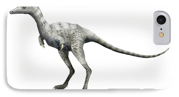 Ceratonykus Dinosaur IPhone Case by Nobumichi Tamura