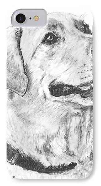 Charcoal Drawing Yellow Lab In Profile Phone Case by Kate Sumners