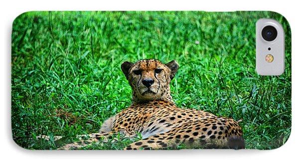 Cheetah Phone Case by Karol Livote