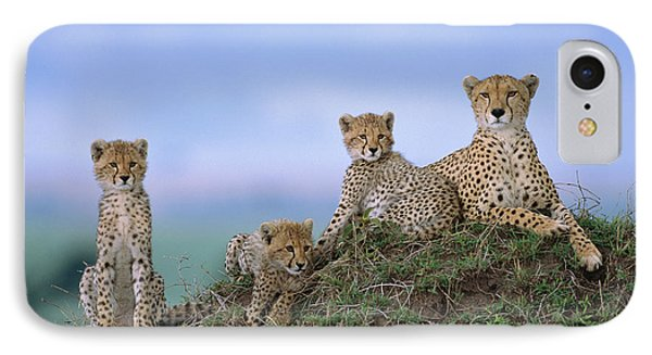 Cheetah Mother And Cubs Masai Mara IPhone 7 Case by Yva Momatiuk John Eastcott