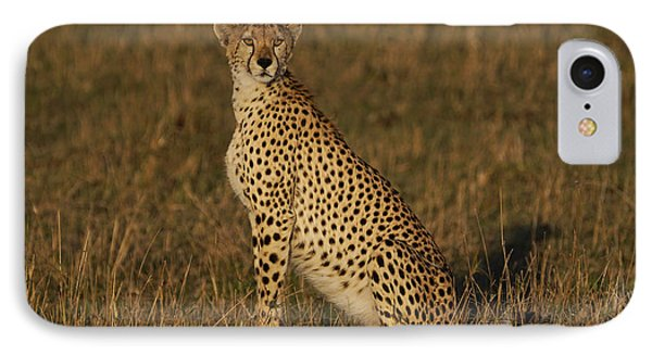 Cheetah On Savanna Masai Mara Kenya IPhone 7 Case by Hiroya Minakuchi