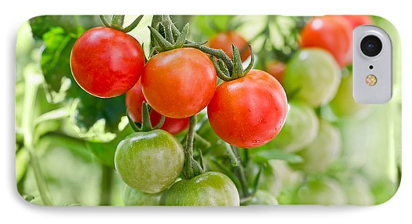 Cherry Tomatoes IPhone 7 Case by Delphimages Photo Creations