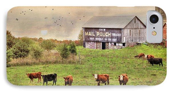 Chew Mail Pouch IPhone Case by Lori Deiter