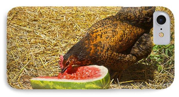 Chicken And Her Watermelon Phone Case by Sandi OReilly