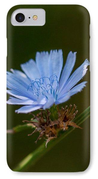 Chicory Phone Case by Lara Ellis