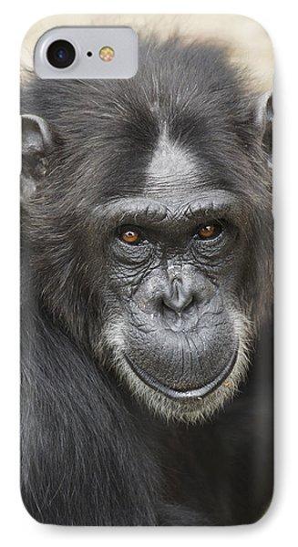 Chimpanzee Portrait Ol Pejeta IPhone 7 Case by Hiroya Minakuchi