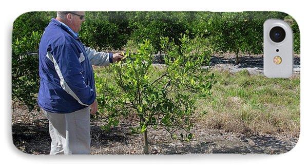 Citrus Farming IPhone Case by Jim West