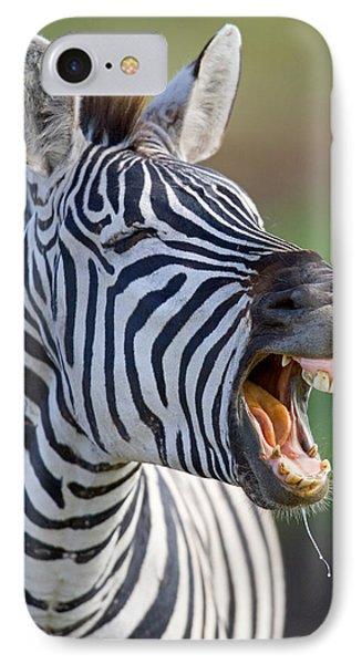 Close-up Of A Zebra Calling, Ngorongoro IPhone Case by Panoramic Images