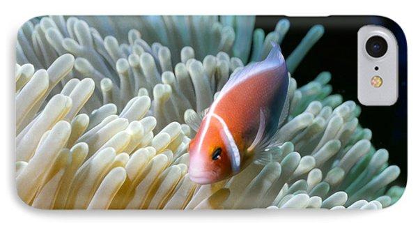 Clownfish 9 Phone Case by Dawn Eshelman