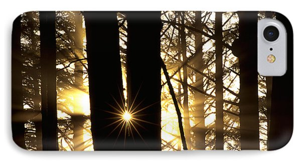 Coastal Forest Phone Case by Art Wolfe