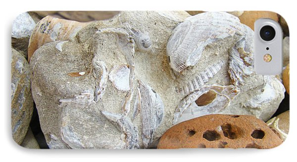 Coastal Shell Fossil Art Prints Rocks Beach IPhone Case by Baslee Troutman
