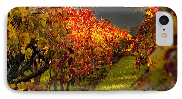 Color On The Vine IPhone 7 Case by Bill Gallagher