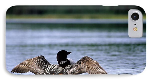 Common Loon IPhone 7 Case by Mark Newman