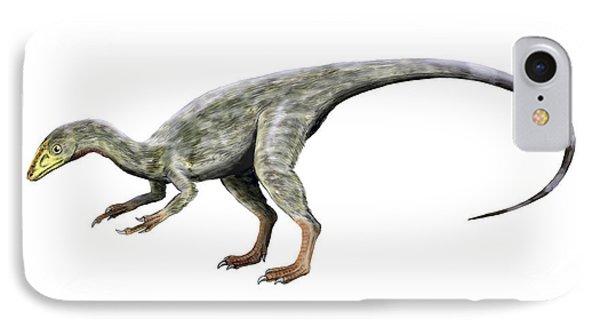 Compsognathus Dinosaur IPhone Case by Nobumichi Tamura
