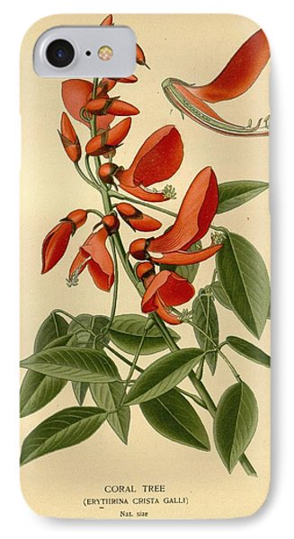 Coral Tree IPhone Case by Philip Ralley