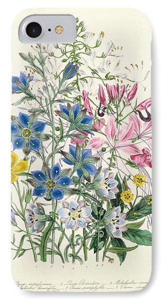 Cornflower IPhone Case by Jane Loudon