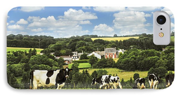 Cows In A Pasture In Brittany IPhone Case by Elena Elisseeva