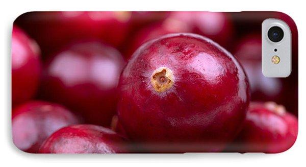 Cranberry Closeup IPhone Case by Jane Rix