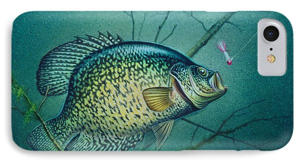 Crappie And Pink Jig IPhone Case by Jon Q Wright